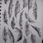 photo dessins de plumes a tatouer