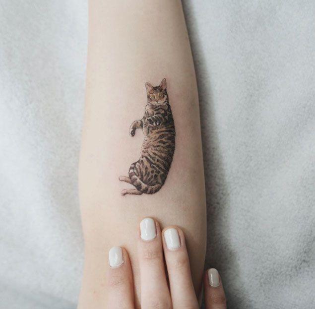 Tatouage photorealiste chat tigre sur avant bras femme