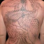 phoenix tatouage femme contour