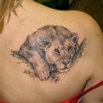 tatouage lionne couchee fille omoplate