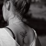 modele tatouage arbre dos femme sans feuille avec racine