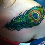 modele tatouage plume depaon epaule droite