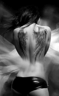 photo tattoo feminin plume ailes d ange dos