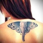modele tatouage dos avec ailes de papillon correspondant aux oreilles d un elephant