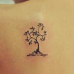 photo tattoo feminin dos omoplate discret arbre avec feuilles et petites racines