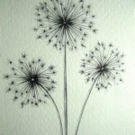 modele tatouage 3 fleurs de pissenlit
