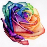 dessin tattoo feminin rose multicolore