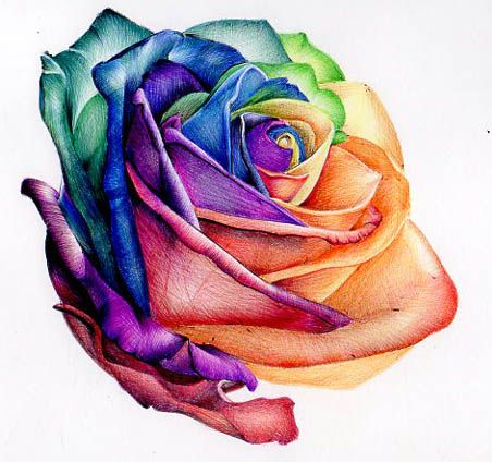 Dessin Tattoo Feminin Rose Multicolore Tatouage Femme