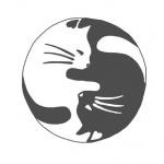 Dessin pour tatouage femme chat yin et yang