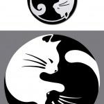 Dessin tatouage chat blanc et noir femme forme yin et yang
