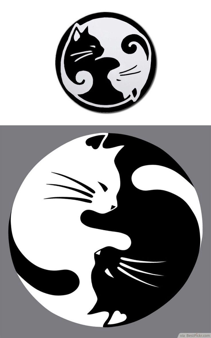 Motif Tatouage Noir Et Blanc: Dessin Tatouage Chat Blanc Et Noir Femme Forme Yin Et Yang