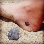 Photo petit tattoo feminin discret pied coquillage