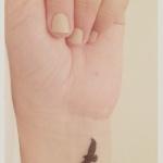Petit tatouage 3 oiseaux femme interieur poignet