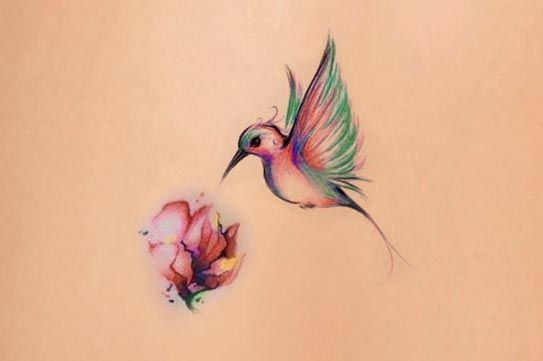 Tatouage Aquarelle Oiseau Butinant Une Fleur Tatouage Femme